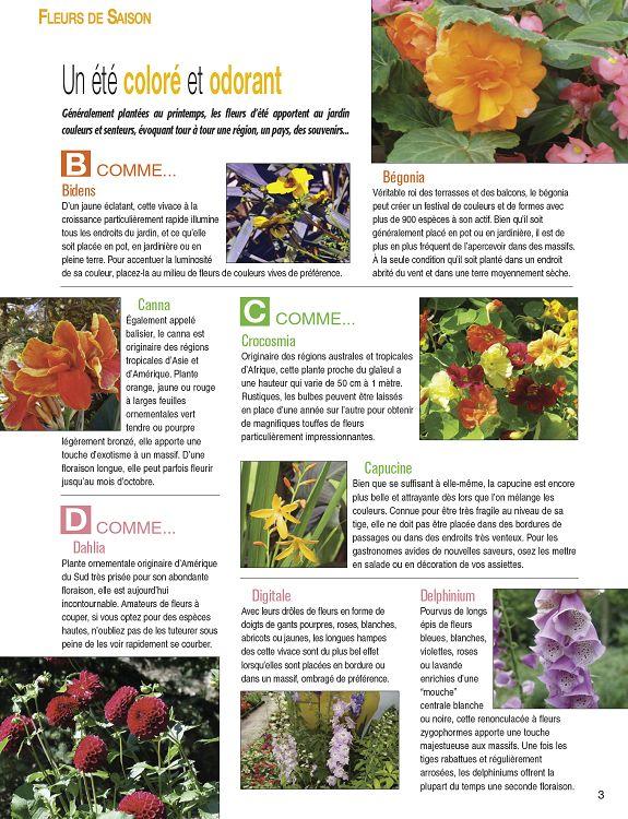 Déco   Jardin n°2 aoû sep 2010 - Page 2 - 3 - Déco   Jardin n°2 aoû ... 31291322576e