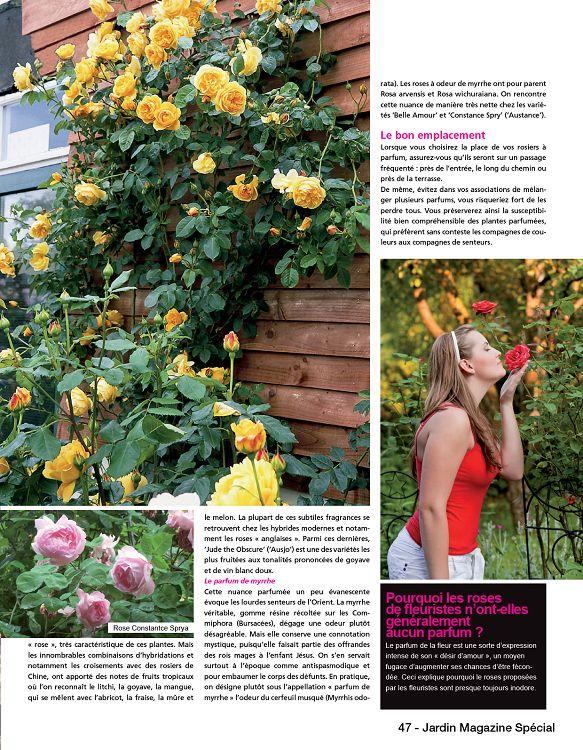 Jardin magazine sp cial n 1 mai jun 2016 page 32 33 for Jardin 1001 saveurs