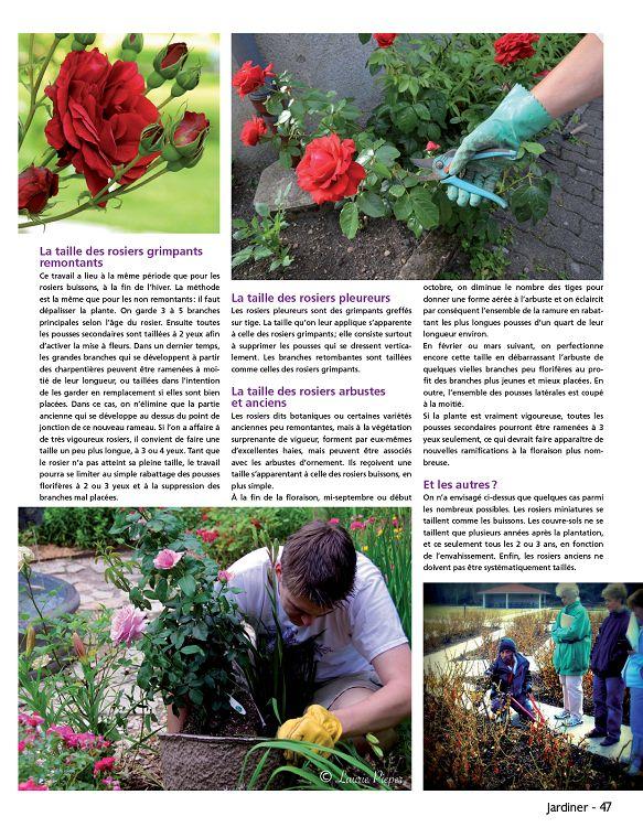 fr.1001mags.com/images/Couv/J/Jardiner/11/40363-Jardiner-11-Page-047.jpg