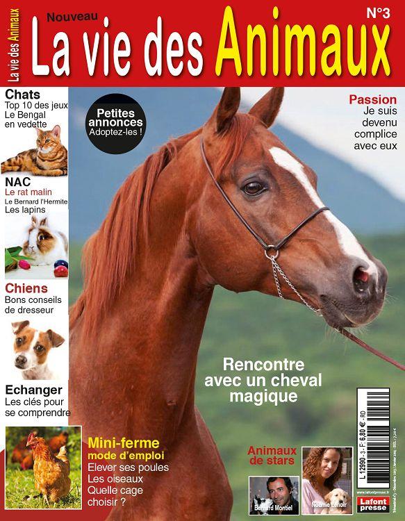 rencontre dans le monde du cheval