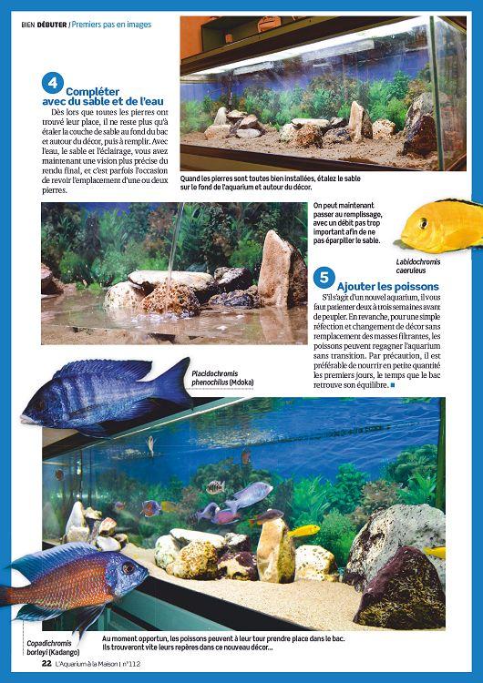 javelliser son bassin a poisson