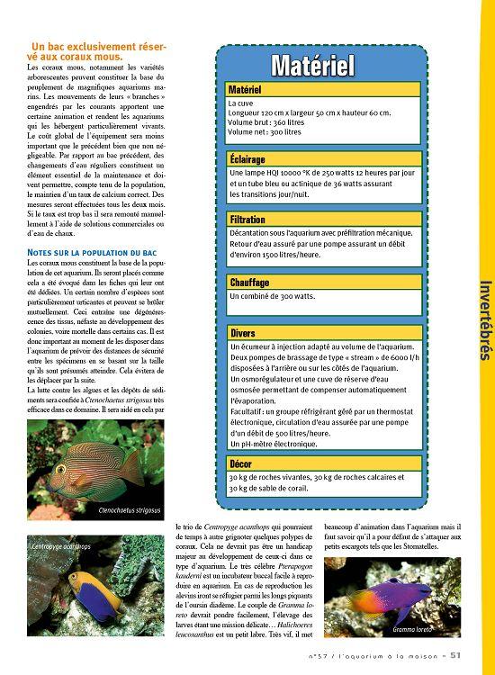 Maison 50 N°57 À 2006 La L'aquarium Novembre 51 L Page 54Lcq3RjA