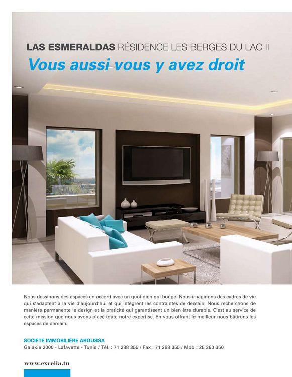 Maisons de tunisie n13 mai jun 2011 000 €