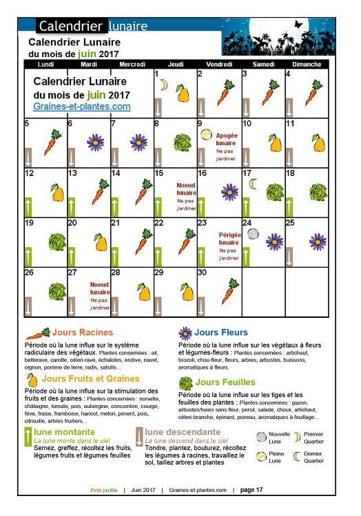 Calendrier Lunaire Graine Et Plante.Petit Jardin N 125 Juin 2017 Page 16 17 Petit Jardin N