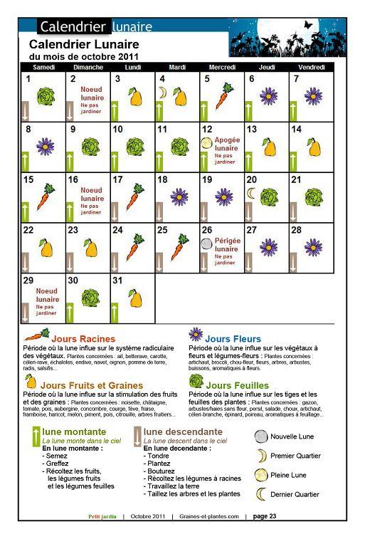 Calendrier Lunaire Graines Et Plantes Mai 2019.Petit Jardin N 62 Octobre 2011 Page 22 23 Petit Jardin