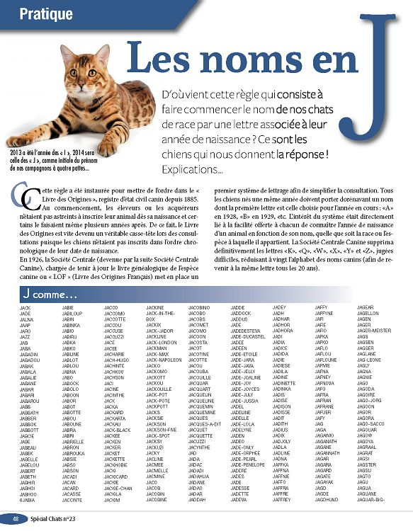 quelle lettre pour les chats en 2015 Spécial Chats n°23 fév/mar/avr 2014   Page 48   49   Spécial Chats  quelle lettre pour les chats en 2015