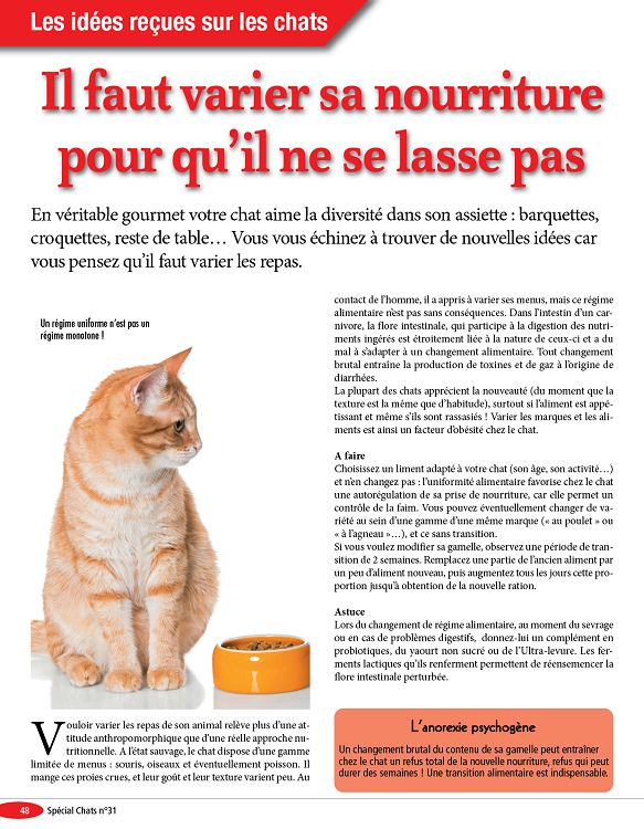 croquettes chats urinary stress cd discount