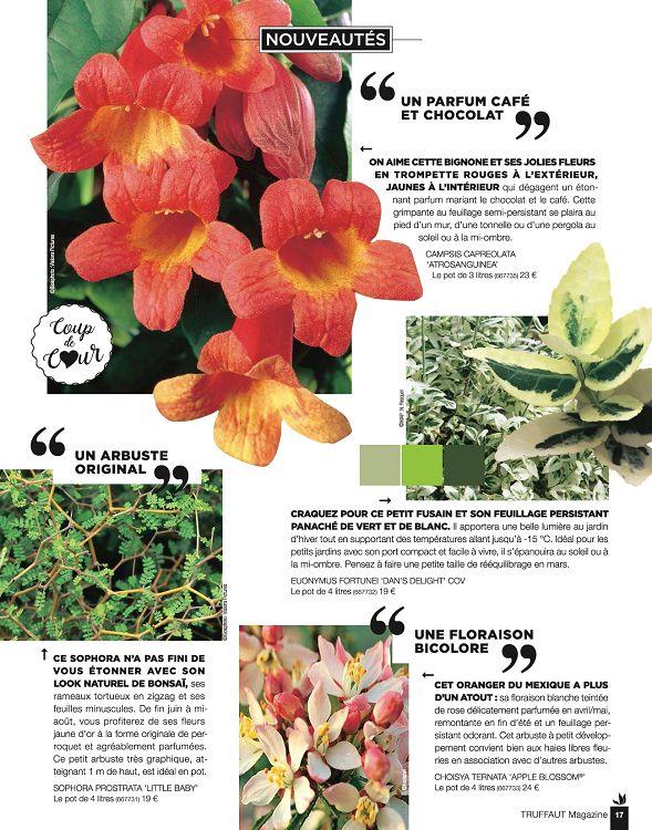 Truffaut Magazine n°75 sep/oct 2017 - Page 2 - 3 - Truffaut Magazine ...