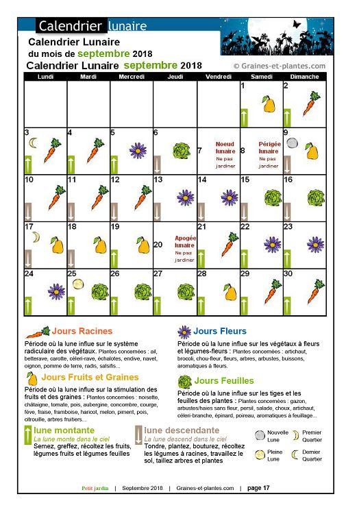 Calendrier Lunaire Graine Et Plantes.Petit Jardin N 138 Septembre 2018 Page 16 17 Petit