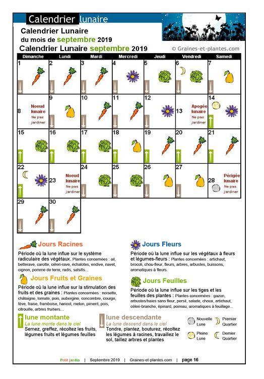 Calendrier Lunaire Graine Et Plantes.Petit Jardin N 149 Septembre 2019 Page 16 17 Petit