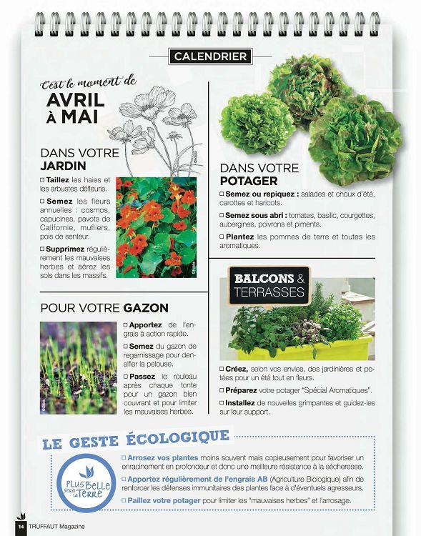 Truffaut Magazine N74 Avrmaijun 2017 Page 14 15