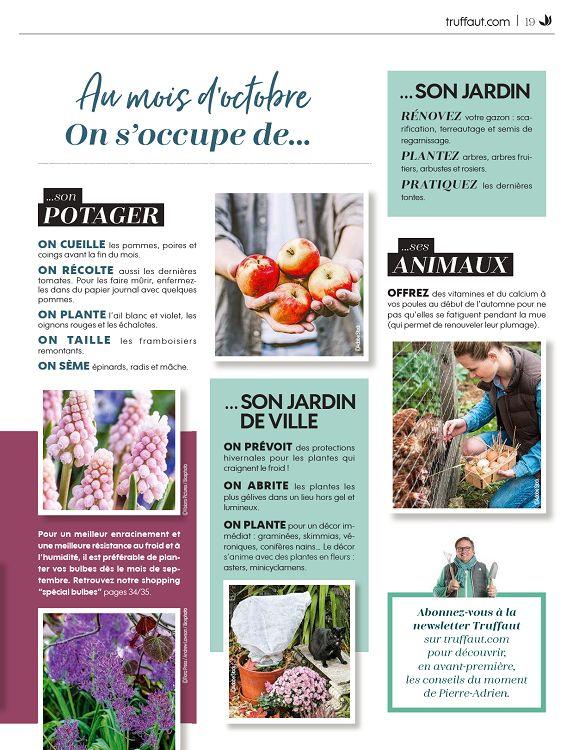 Truffaut Magazine N81 Sepoctnov 2019 Page 18 19
